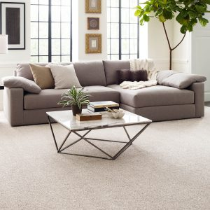 Perfect carpet in living rooms | Mill Direct Floor Coverings