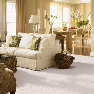 Gentle Approach of carpet | Mill Direct Floor Coverings