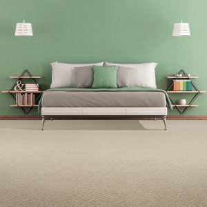 Carpet Inspiration Gallery | Mill Direct Floor Coverings