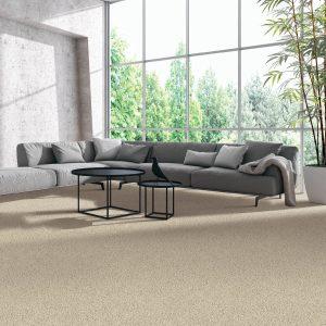 Natural Splendor carpet | Mill Direct Floor Coverings