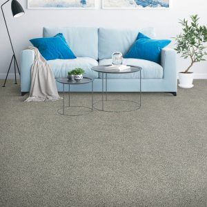Placid Reflection carpet | Mill Direct Floor Coverings