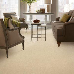 Carpet in living room | Mill Direct Floor Coverings