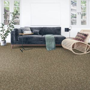 Soft intrigue carpet floor | Mill Direct Floor Coverings